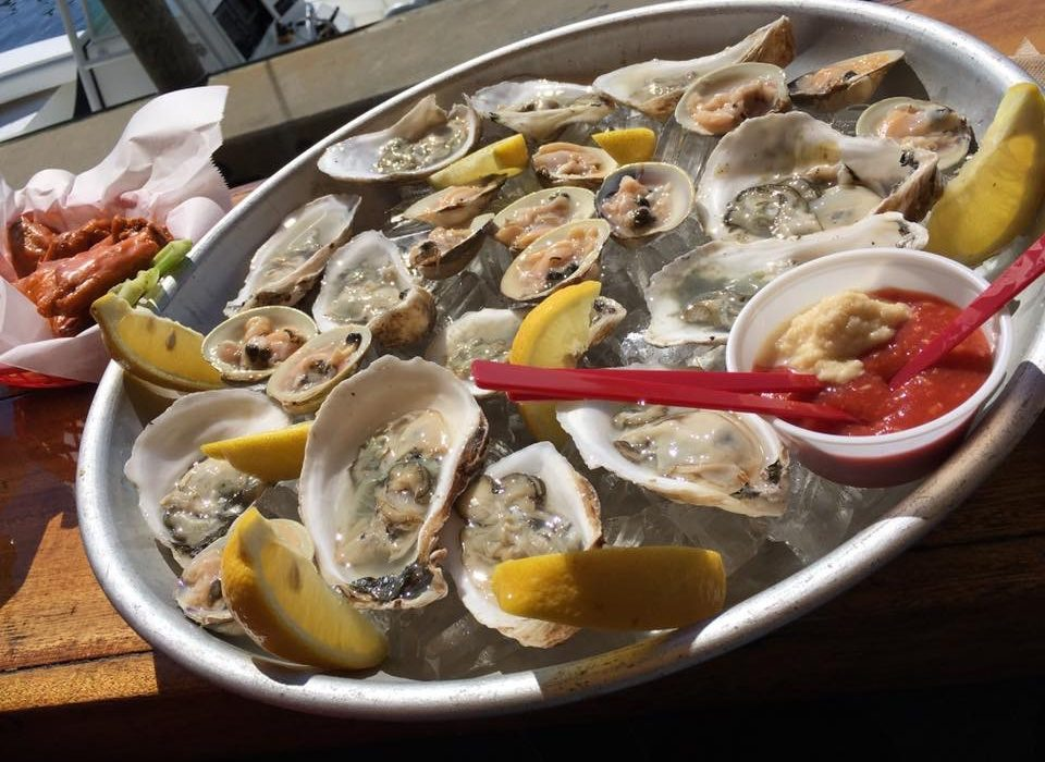 Martha's Vineyard Oysters