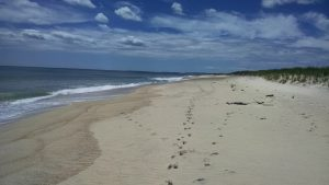 Long Point Beach, Martha's Vineyard