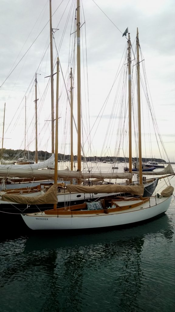 MV Sail