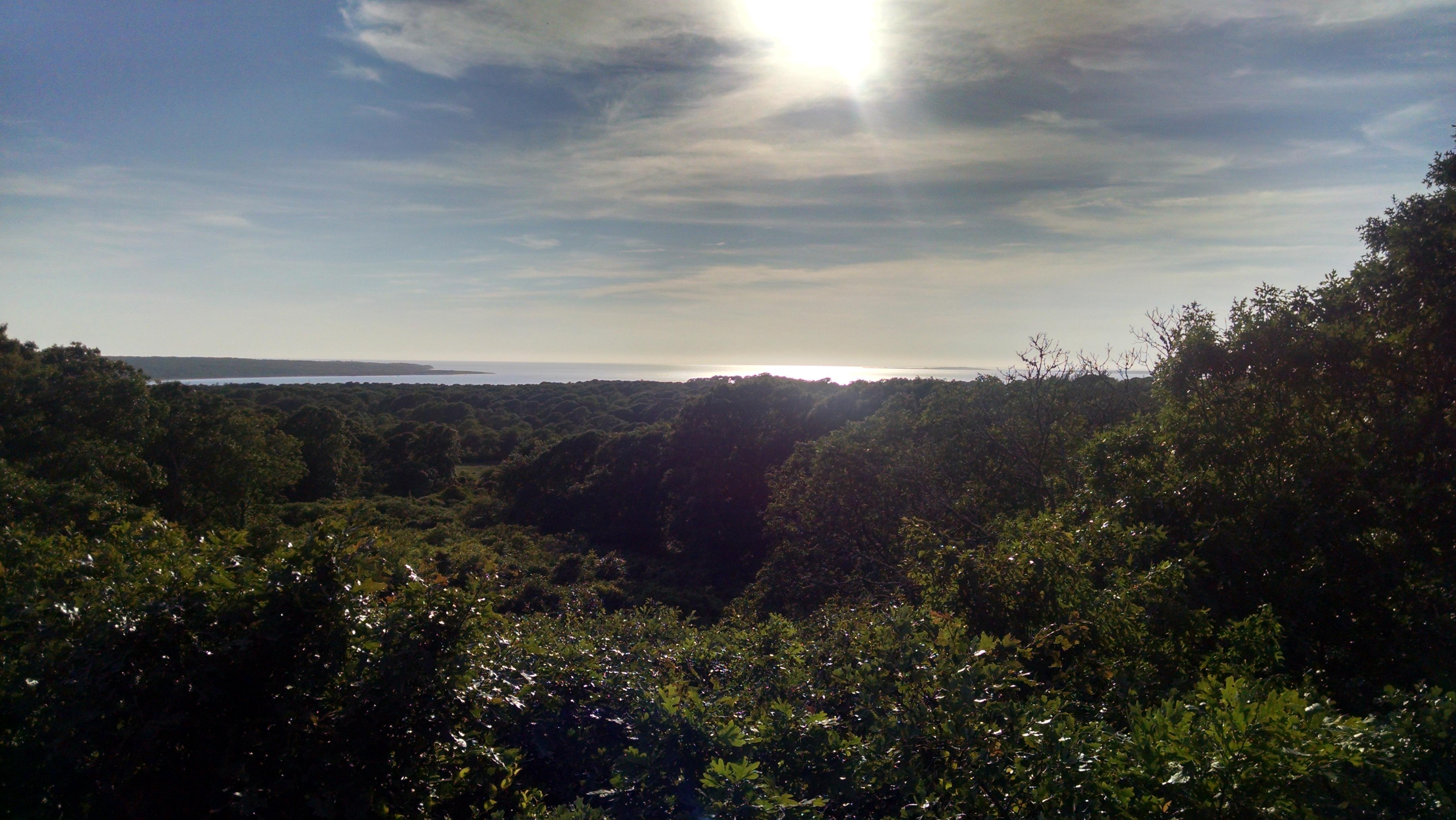 Menemsha Hill View