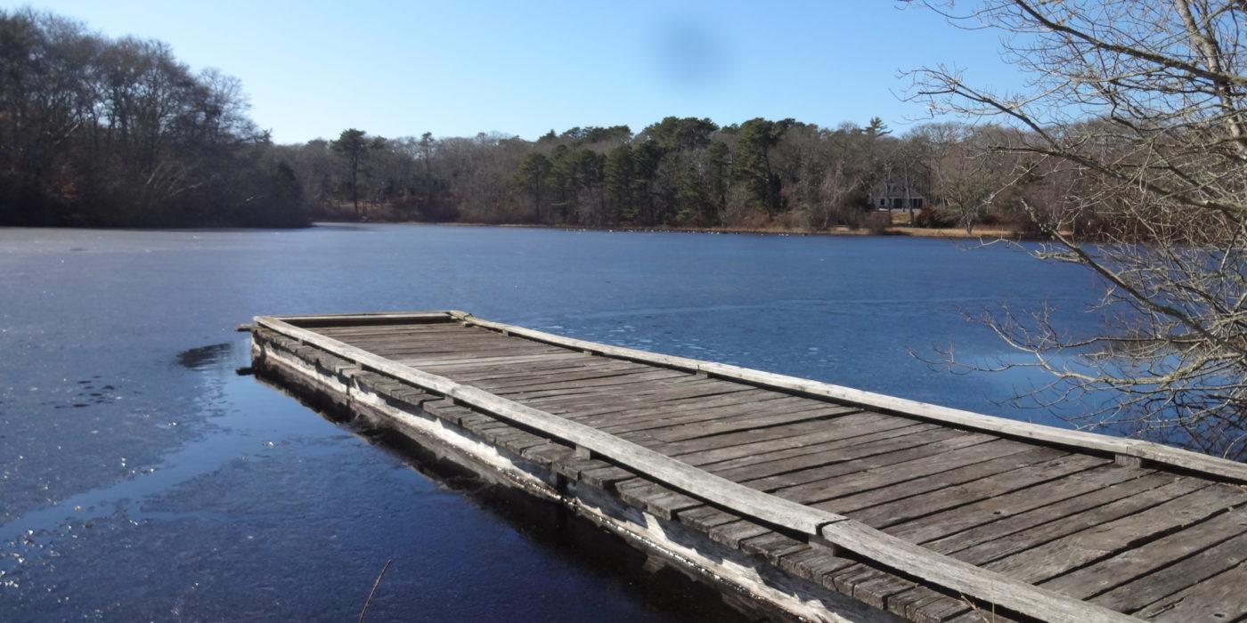 Duarte's Pond