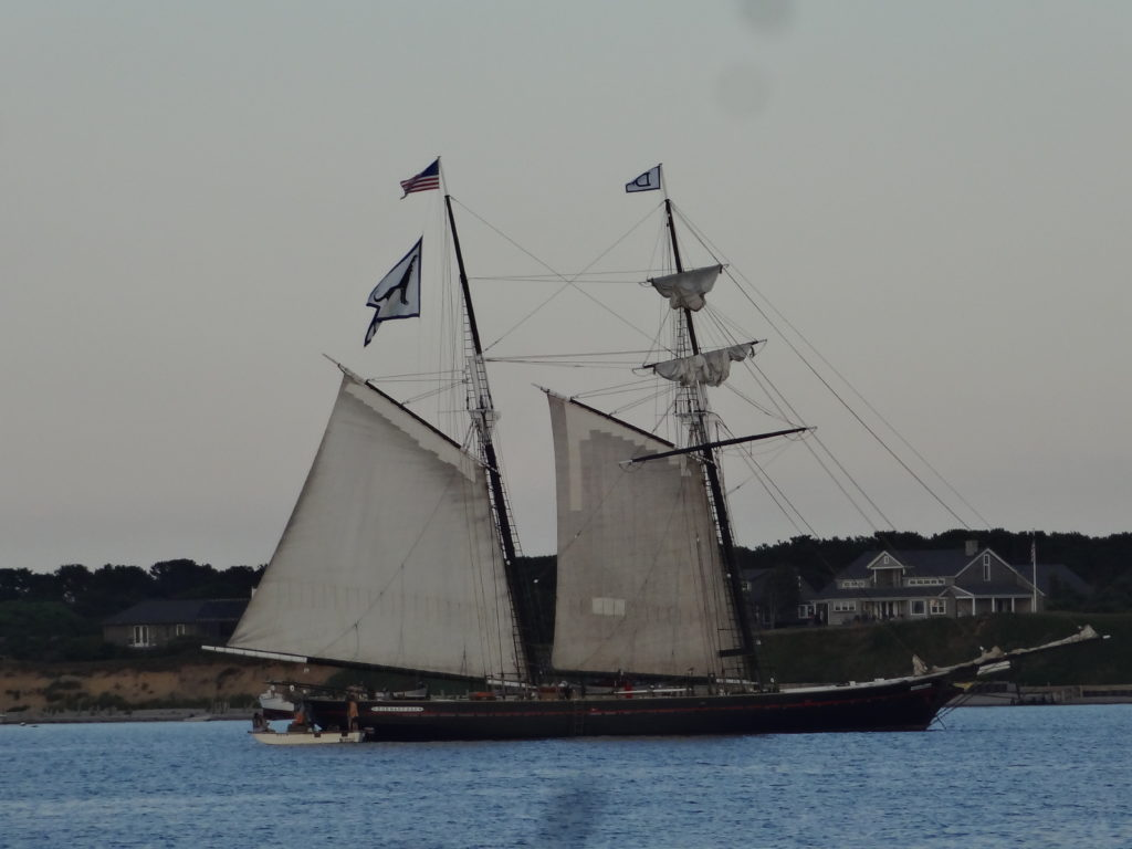 Black Dog Tall Ship Sailing