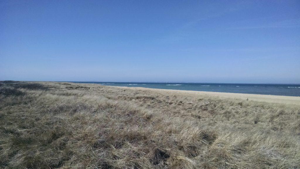 East Beach on Chappaquiddick
