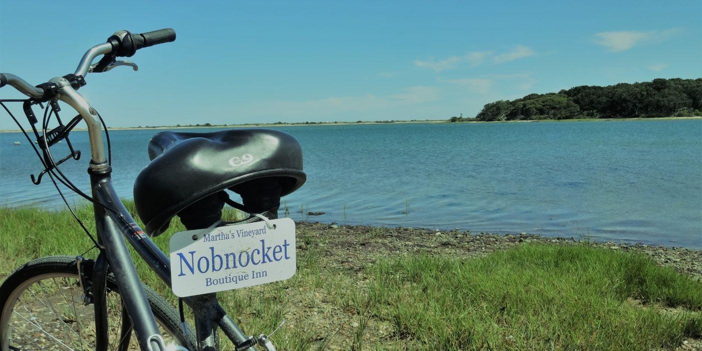 Bike at Pecoy Point
