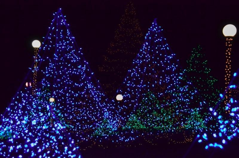 Christmas Lights Oak Bluffs