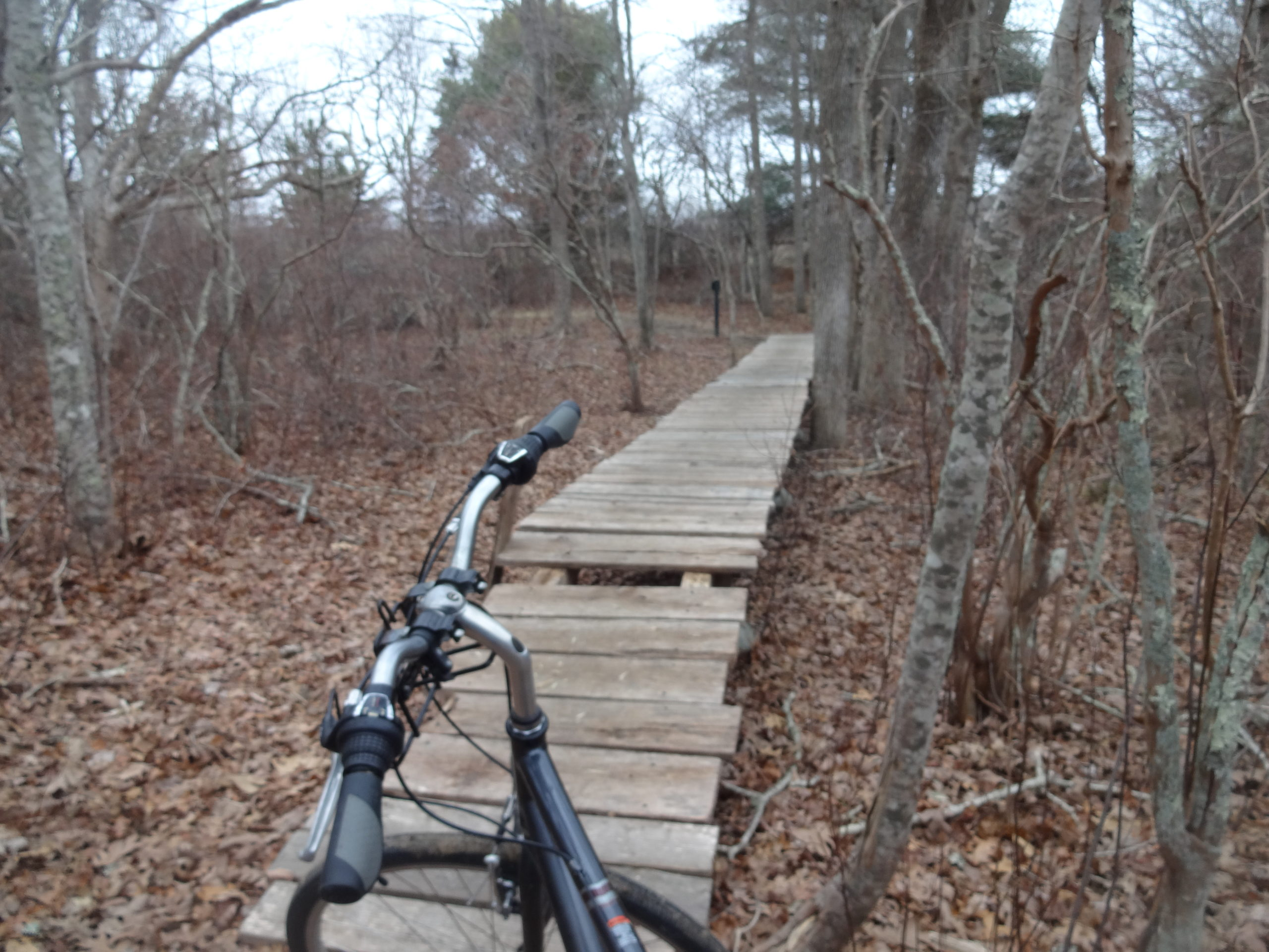 Boardwalk and Bike
