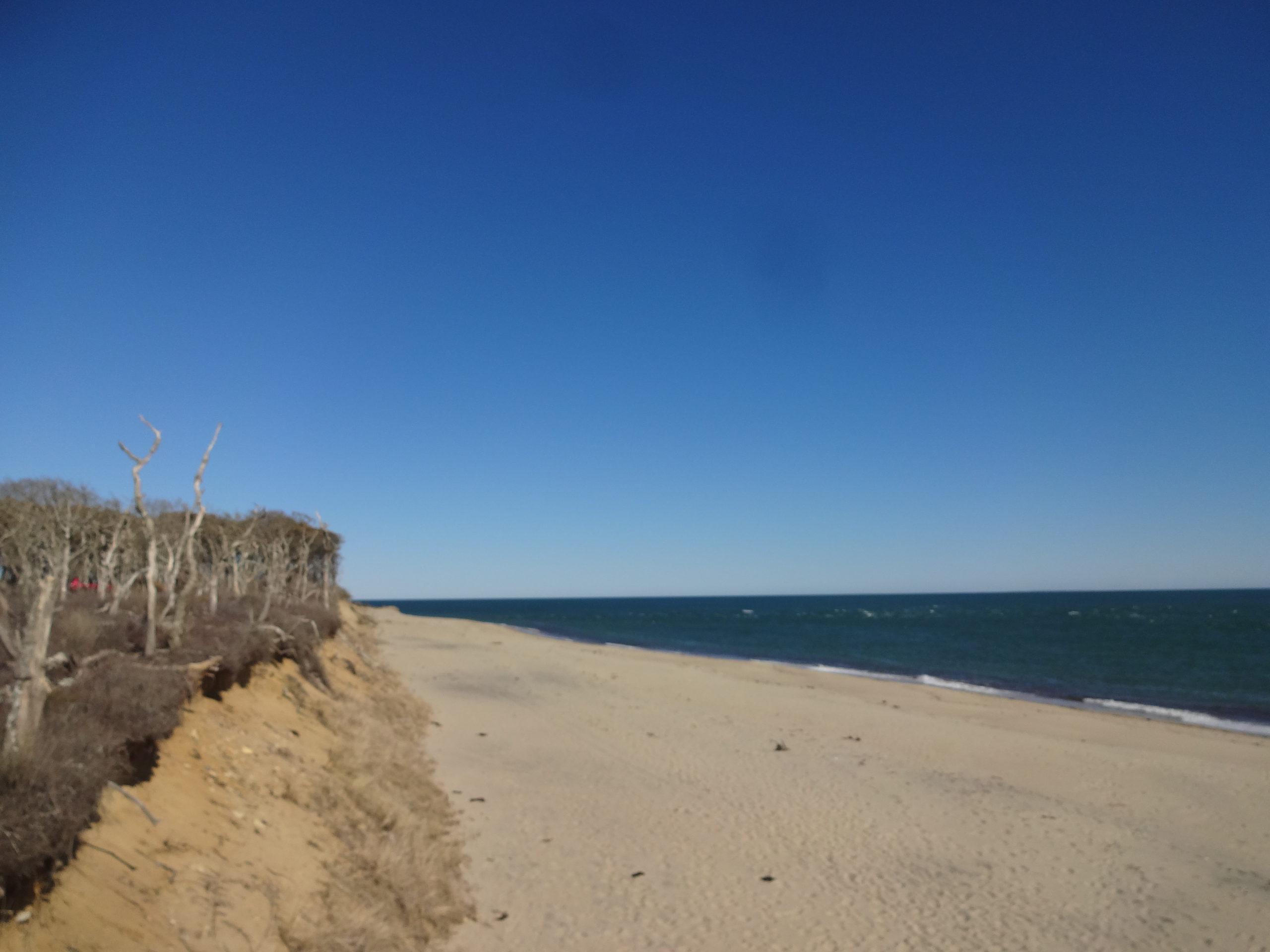 Wasque Beach
