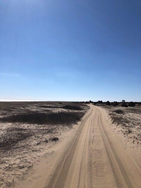 Trail on Chappy